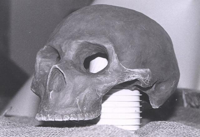 clay skull 01