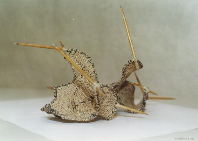 thorns 01